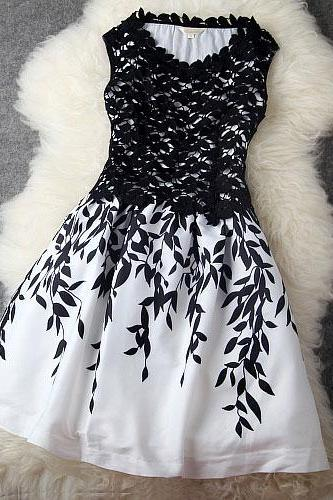 Elegant Black and White Lace DetailedParty Dress