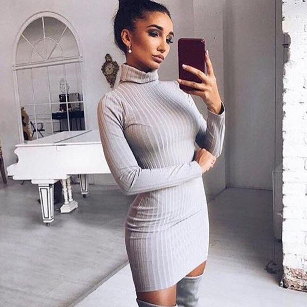 Turtle Neck Knitted Bodycon Long Sleeve Dress