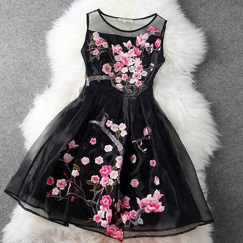 Beautiful Chiffon and Lace Sleeveless Dress